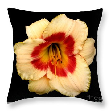 Throw Pillow featuring the photograph Daylily 3 by Rose Santuci-Sofranko