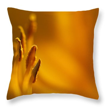 Daylily Detail Throw Pillow