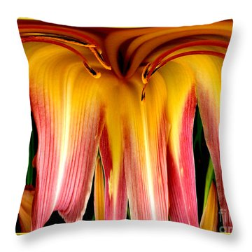 Daylily Flower Abstract 3 Throw Pillow by Rose Santuci-Sofranko