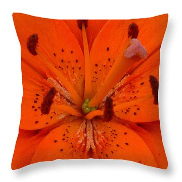 Daylily Heart Throw Pillow