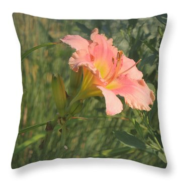 Throw Pillow featuring the photograph Daylily In The Sun by Jayne Wilson
