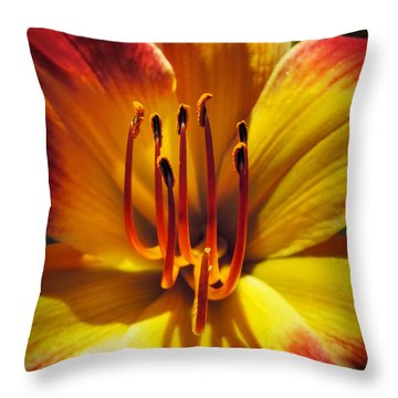 Throw Pillow featuring the photograph Daylily Macro 001 by Lance Vaughn