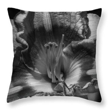 Throw Pillow featuring the photograph Daylily Macro 003 Bw by Lance Vaughn