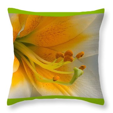 Throw Pillow featuring the photograph Gold Daylily Close-up by Patti Deters