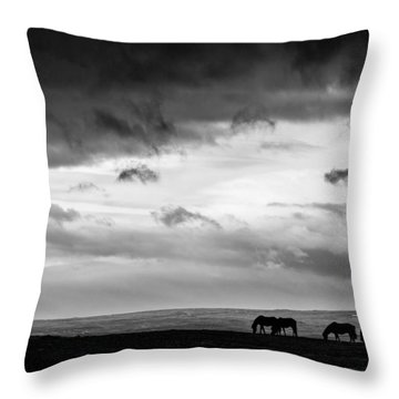 Days End At Hvammstangi Throw Pillow by Dave Bowman