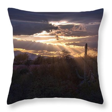 Throw Pillow featuring the photograph Days End by Dan McManus