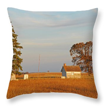 Days End Throw Pillow by Mary Carol Story
