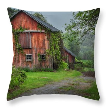 Days Gone By Throw Pillow by Bill Wakeley