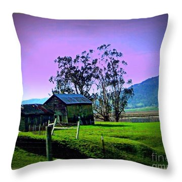 Throw Pillow featuring the photograph Days Gone By by Bobbee Rickard