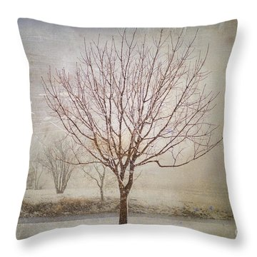 Days Of Old Throw Pillow by Betty LaRue
