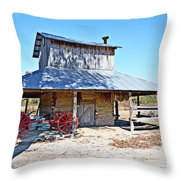 Throw Pillow featuring the photograph Days Of Yore by Linda Brown