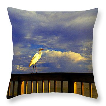Daytona Beach Rail Bird Sun Glow Pier  Throw Pillow