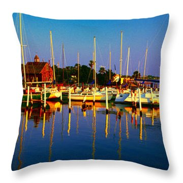 Daytona Beach Florida Inland Waterway Private Boat Yard With Bird   Throw Pillow