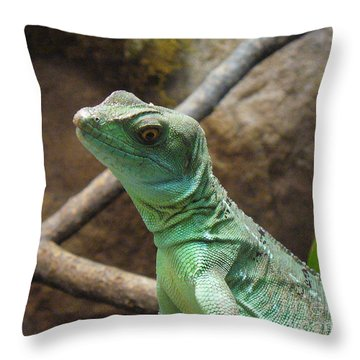 Throw Pillow featuring the photograph Dazed And Confused by Lingfai Leung