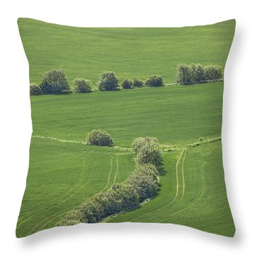Dazzling Green Throw Pillow