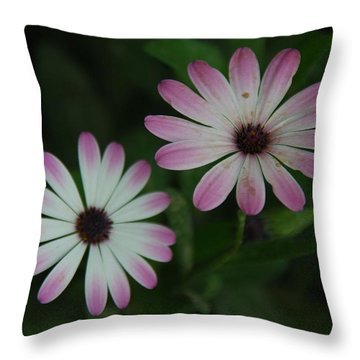 Throw Pillow featuring the photograph Dbg 041012-0110 by Tam Ryan