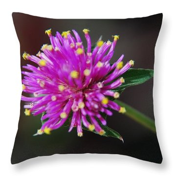 Throw Pillow featuring the photograph Dbg 050812-1779 by Tam Ryan