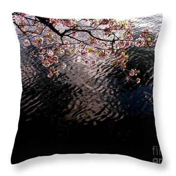 Throw Pillow featuring the photograph Dc Cherry And Black by Jacqueline M Lewis