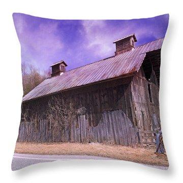 Dead Men Don't Tell Tales Throw Pillow by Betsy Knapp