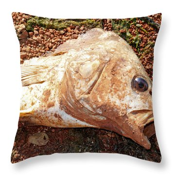 Dead Or Alive? Throw Pillow