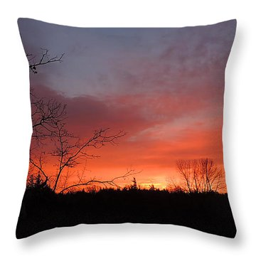 Dead Tree Sunrise Throw Pillow