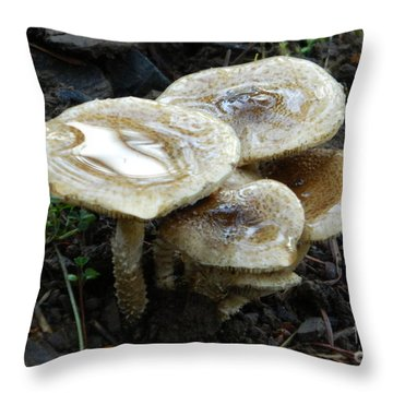 Throw Pillow featuring the photograph Deadly Beauty 1 by Chalet Roome-Rigdon