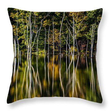 Throw Pillow featuring the photograph Deadwood by Mihai Andritoiu