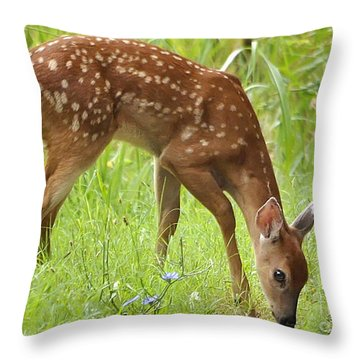 Throw Pillow featuring the photograph Little Fawn Blue Wildflowers by Nava Thompson
