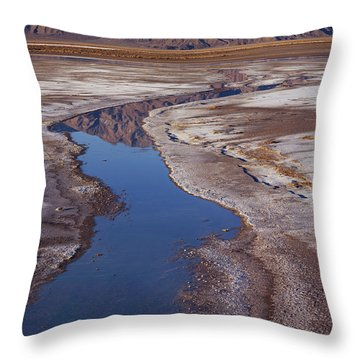 Death Valley Salt Stream 1 Throw Pillow