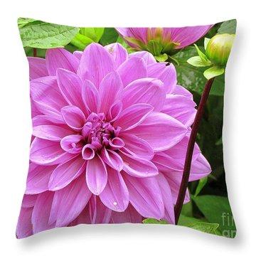 Decadent Dahlia   Throw Pillow by Elizabeth Dow