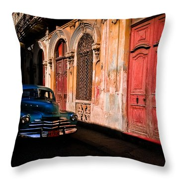 Decaying Beauty  Throw Pillow by Cecil K Brissette