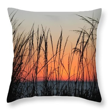 December Dawn Throw Pillow by Robert Banach