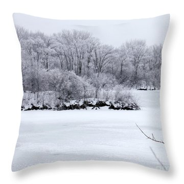 December Lake Throw Pillow by Debbie Hart