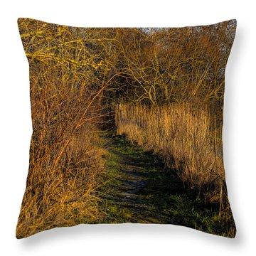 december light - Leif Sohlman Throw Pillow