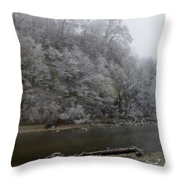 Throw Pillow featuring the photograph December Morning On The River by Felicia Tica