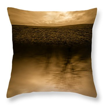 December Sky Throw Pillow by Bob Orsillo