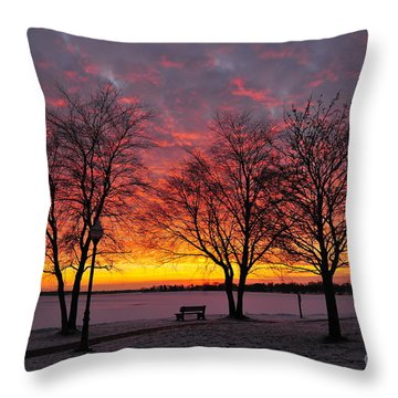 Throw Pillow featuring the photograph December Sunset by Terri Gostola