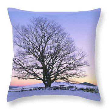 Throw Pillow featuring the photograph December Twilight by Alan L Graham