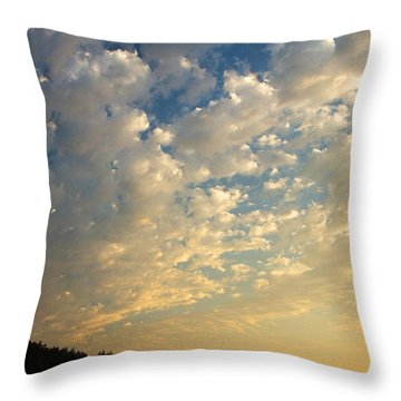 Deception Pass Throw Pillow by Sonya Lang