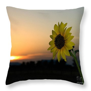Throw Pillow featuring the photograph Sunflower And Sunset by Mae Wertz