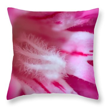 Decompression Chamber Throw Pillow