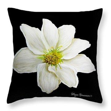 Decorative White Floral Flower Art Original Chic Painting Madart Studios Throw Pillow by Megan Duncanson