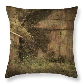 Decrepitude Throw Pillow by Cynthia Lassiter