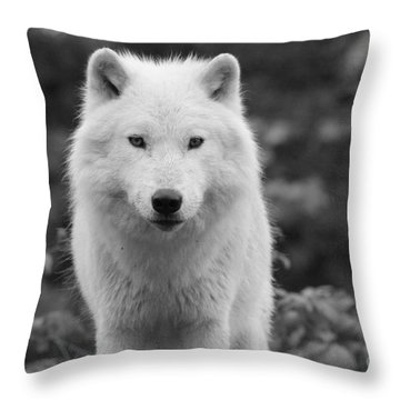 Deep Connection Throw Pillow
