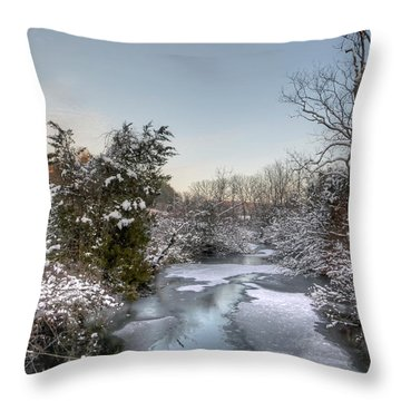 Deep Creek At Green Lane Reservoir - Pennsylvania Usa Throw Pillow by Mother Nature
