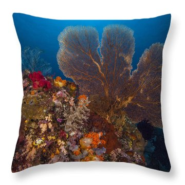 Deep Fan Of Bali Throw Pillow by Terry Cosgrave