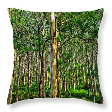 Deep Forest Throw Pillow