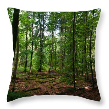 Deep Forest Trails Throw Pillow by Miguel Winterpacht