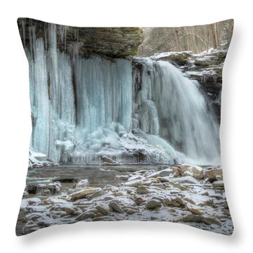 Deep Freeze Throw Pillow