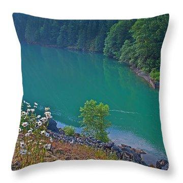 Deep Green River Near Ross Lake Washington In Forest Throw Pillow by Valerie Garner